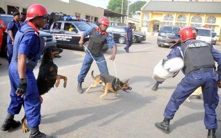Scooper - Entertainment News: Nigerian Civil Defence ranks and salary